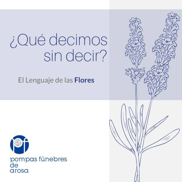 ¿Qué decimos sin decir? El lenguaje de las flores