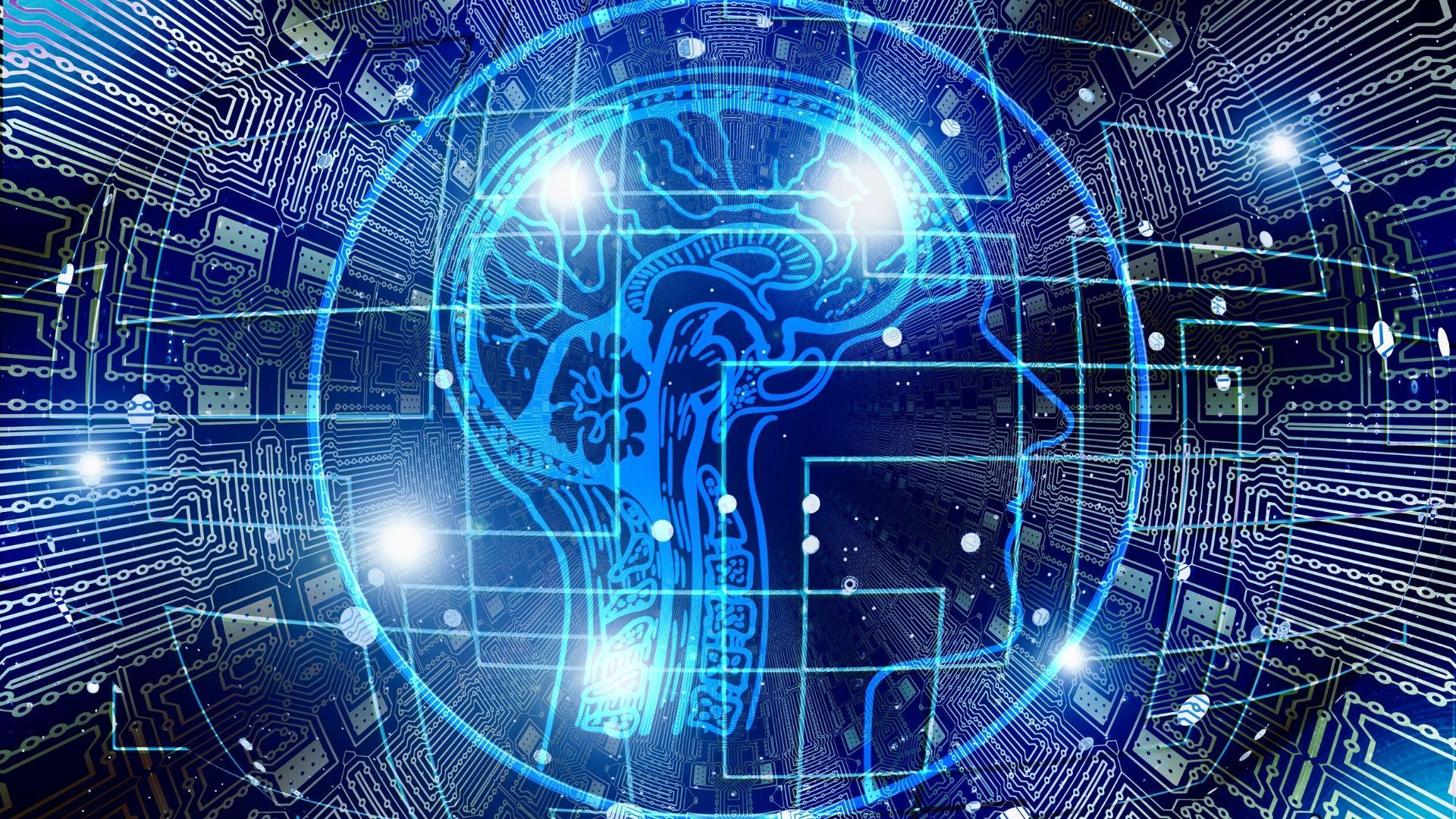 ¿Qué ocurre en nuestro cerebro tras la muerte?